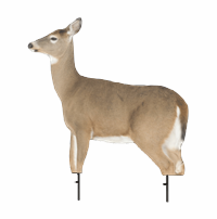 Whitetail Doe Decoy