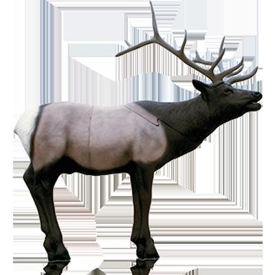 Elk Hunting Tips Blog