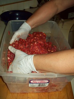 Mixing Sausage By Hand