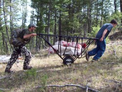 Game Hauler Loaded with Elk
