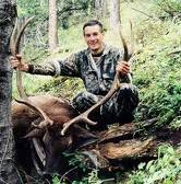 Taylors Elk
