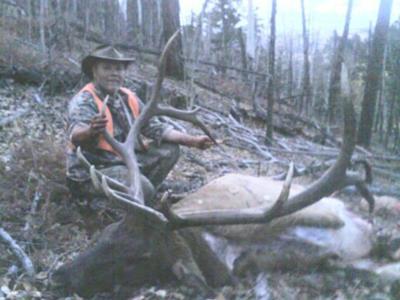 Elk Hunting Colorado: ...