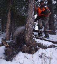 First Elk Kill
