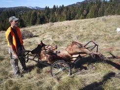 www.elk-hunting-tips.net