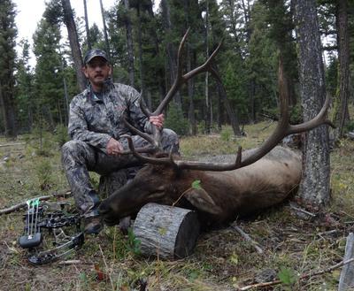 2016 Elk Success