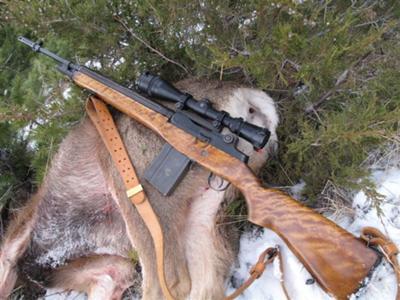 Best Elk Rifle