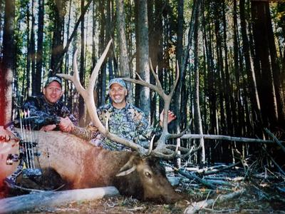My 7x6 Elk