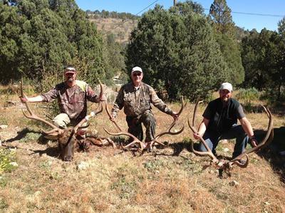 Brother's, Father's, and my elk