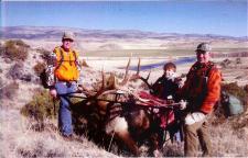 Big Bull Elk on Game Cart